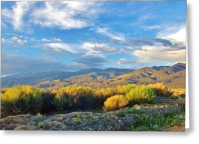 Mountain Valley Greeting Cards - Desert Dusk Panorama Greeting Card by Marilyn Diaz
