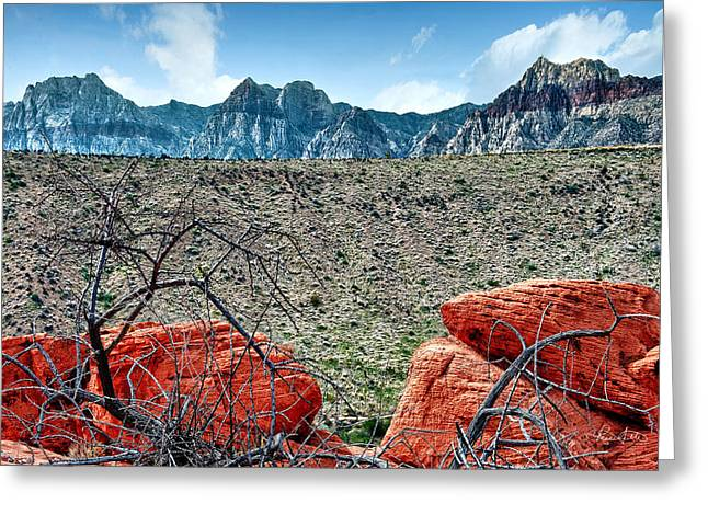Layers Greeting Cards - Desert Layers Greeting Card by Renee Sullivan