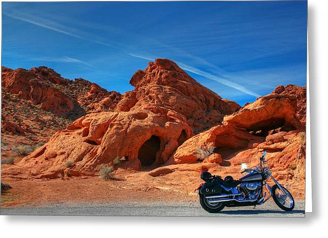 Desert Rider Greeting Card by Charles Warren
