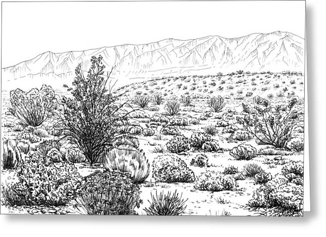 Desert Drawings Greeting Cards - Desert Scrub Ecosystem Greeting Card by Logan Parsons