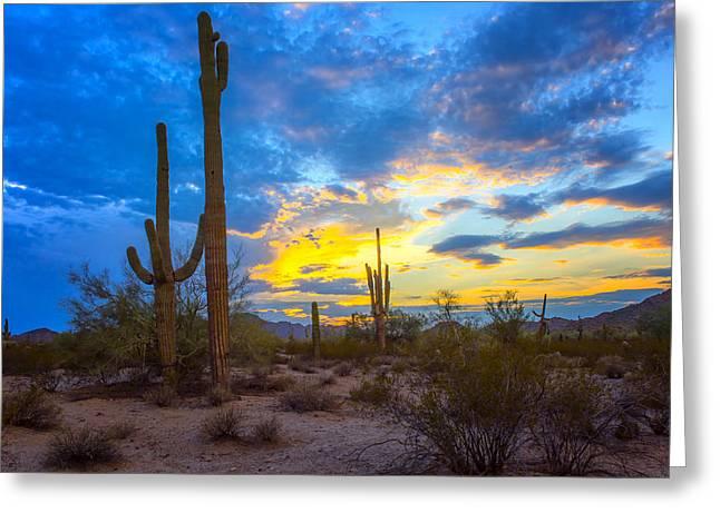 Desert Sky At Sunset - Arizona Greeting Card by Jon Berghoff