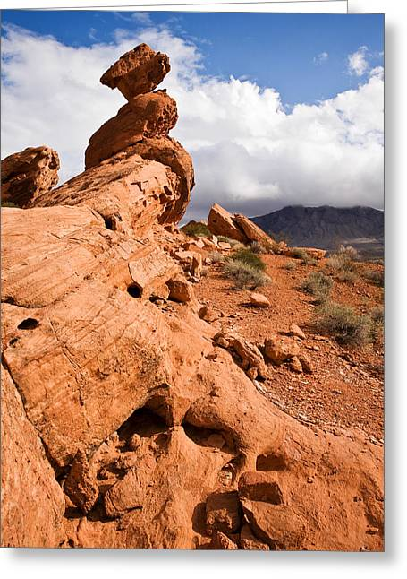 Desert Prints Greeting Cards - Desert Storm Greeting Card by James Marvin Phelps