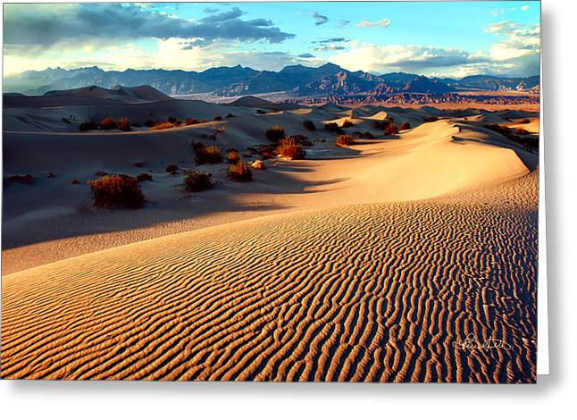 Sand Pattern Greeting Cards - Desert Waves Greeting Card by Renee Sullivan
