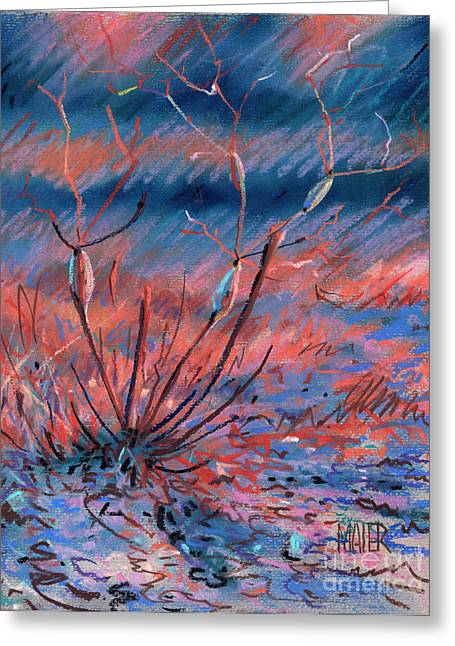 Weed Greeting Cards - Desert Weed Greeting Card by Donald Maier