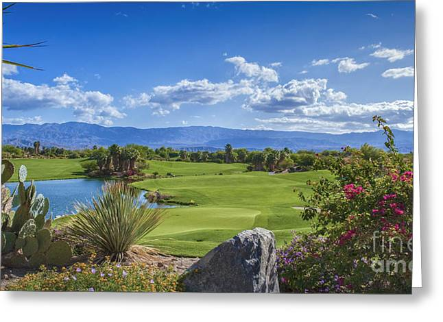 Desert Willow Golf Course  Greeting Card by David Zanzinger