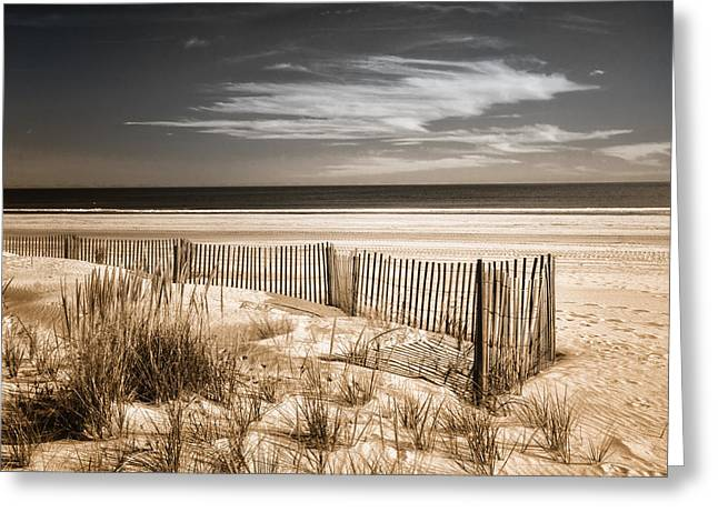 Duo Tone Greeting Cards - Deserted Beach in Duo-tone Greeting Card by Carolyn Derstine