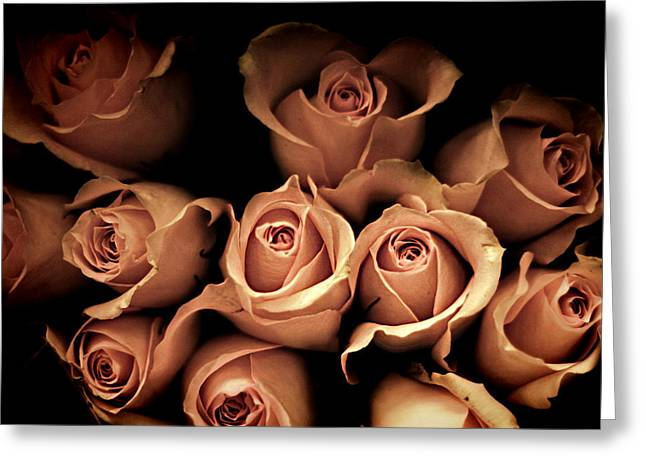 Pink Roses Greeting Cards - Desire Greeting Card by Amy Tyler