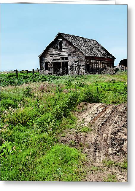 Unpainted Greeting Cards - Desolate Greeting Card by Betty LaRue