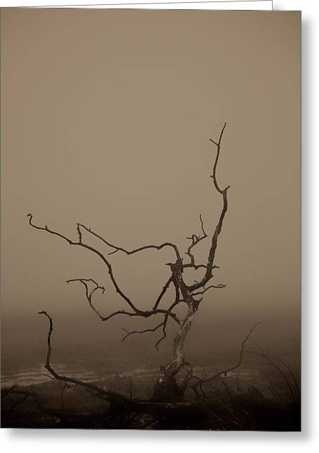 Emptiness Greeting Cards - Desolation Greeting Card by Odd Jeppesen