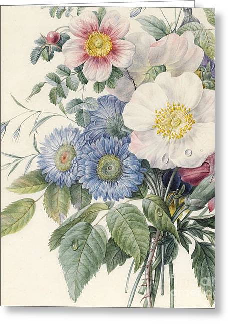 Detail Of Flowers Greeting Card by  Eugene A L d'Orleans