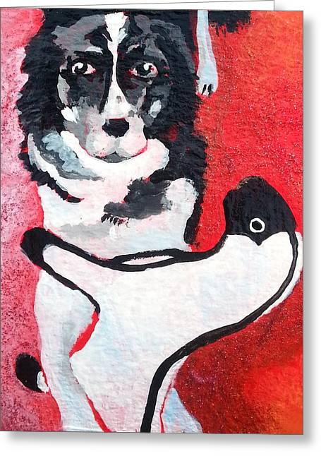 Toy Dog Greeting Cards - Determined Border Collie Herding Favorite Sheep Toy Greeting Card by Corey Habbas