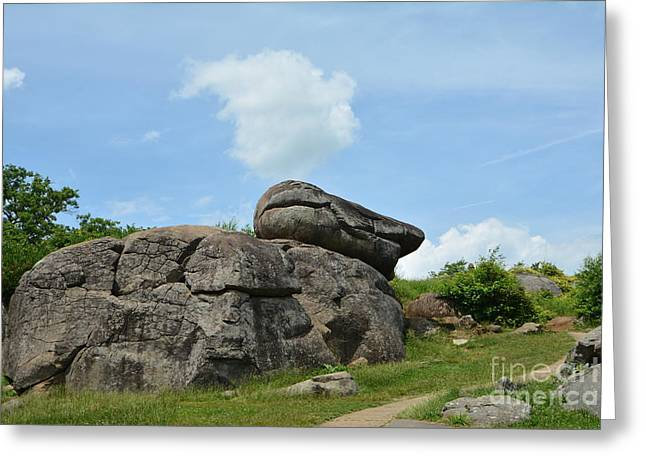 Devils Den Greeting Cards - Devils Den Duck Rock Greeting Card by Edna Weber
