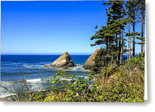 Outlook Greeting Cards - Devils Elbow Park, Oregon Greeting Card by Chris Smith