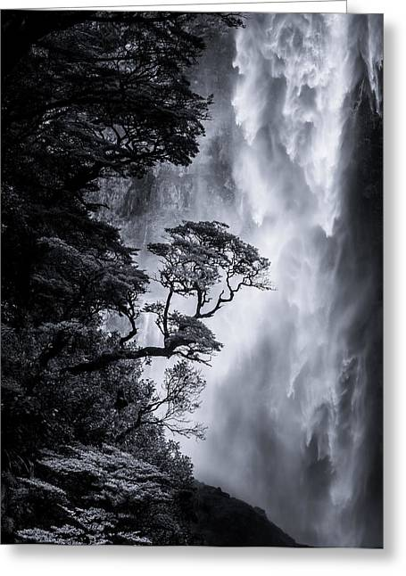 Waterfall Greeting Cards - Devils Punchbowl Greeting Card by Doug Gimesy