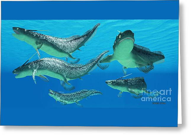 Devonian Xenacanthus Fish Greeting Card by Corey Ford