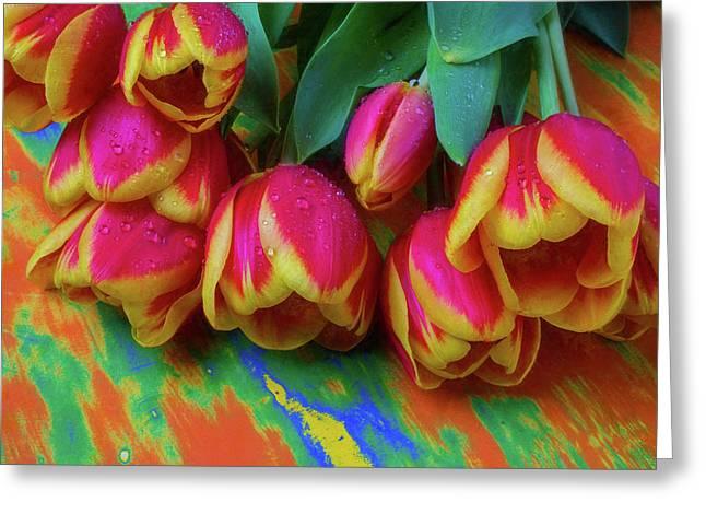 Dewy Soft Tulips Greeting Card by Garry Gay