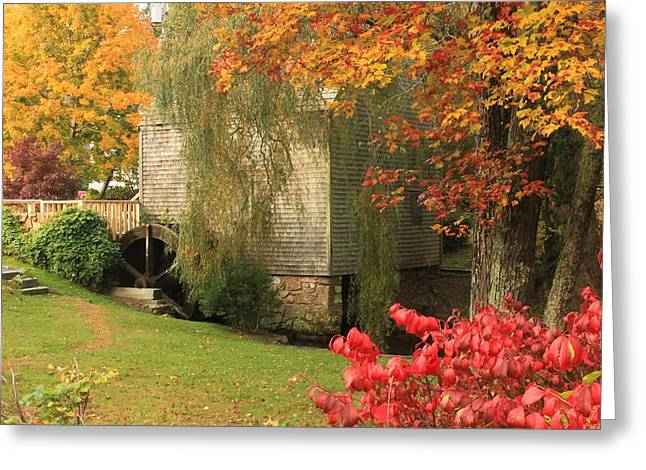 Sandwich Greeting Cards - Dexter Grist Mill Autumn Cape Cod Greeting Card by John Burk