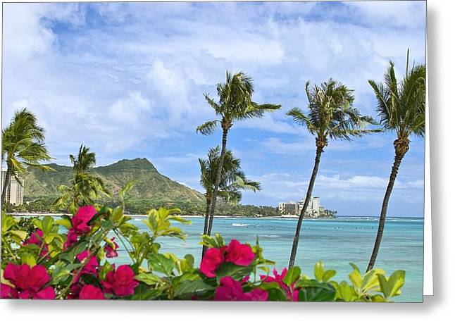Bougainvilleas Greeting Cards - Diamond Head Scene Greeting Card by Tomas del Amo - Printscapes