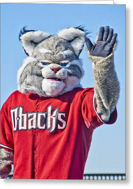 Bobcat Greeting Cards - Diamondbacks Mascot Baxter Greeting Card by Jon Berghoff