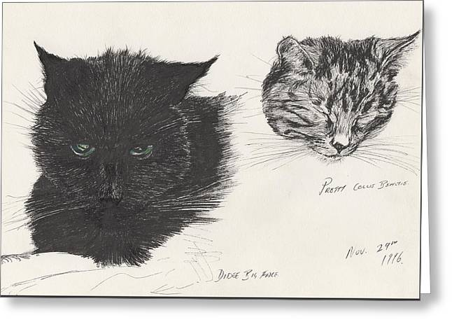 Cats Drawings Greeting Cards - Diddybigface and colliebeastie Greeting Card by Vincent Alexander Booth
