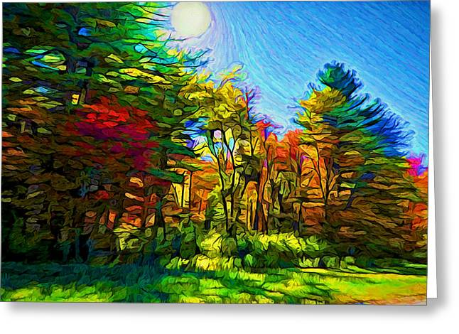 Sunny Afternoon Greeting Card by Lilia D