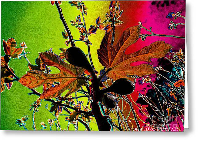 Figtree Greeting Cards - DigitalliaH Im Figtree HojaH 4 Greeting Card by Don Pedro De Gracia