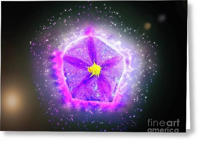 Digitally Manipulated Purple Garden Flower  Greeting Card by Ilan Rosen