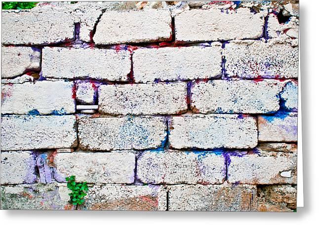 Dilapidated Brick Wall Greeting Card by Tom Gowanlock