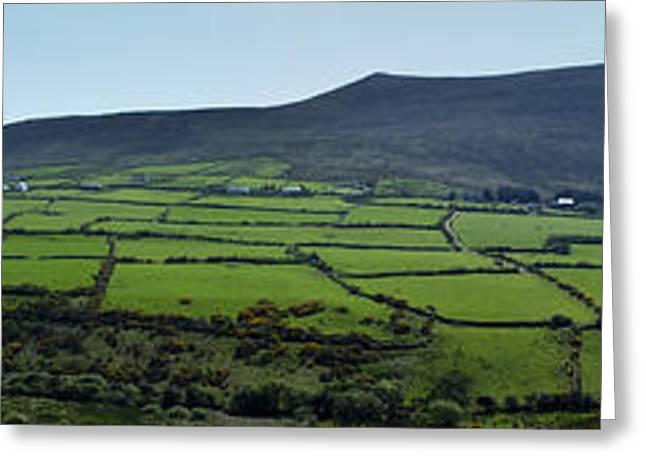 Irish Greeting Cards - Dingle Peninsula Panorama Ireland Greeting Card by Teresa Mucha