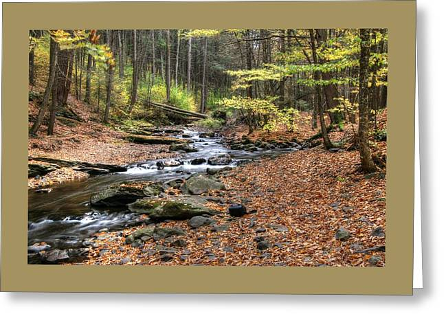 Dingman's Creek 3  - Milford P A Greeting Card by Allen Beatty