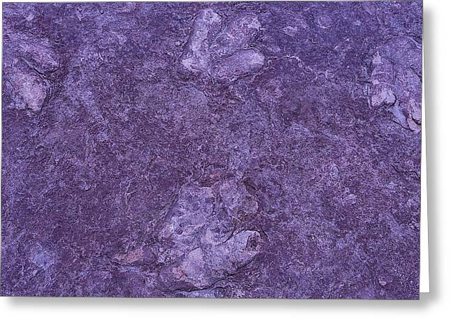 Petrified Greeting Cards - Dinosaur Tracks Greeting Card by Garry Gay