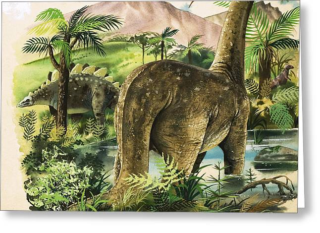 Jurassic Park Greeting Cards - Dinosaurs Greeting Card by English School