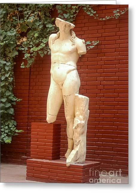 Selcuk Greeting Cards - Dionysos Greeting Card by Bob Phillips