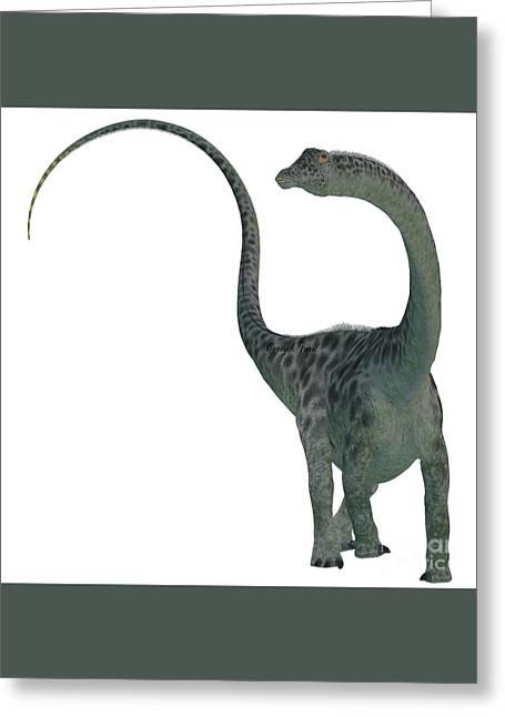Diplodocus Digital Greeting Cards - Diplodocus Dinosaur on White Greeting Card by Corey Ford