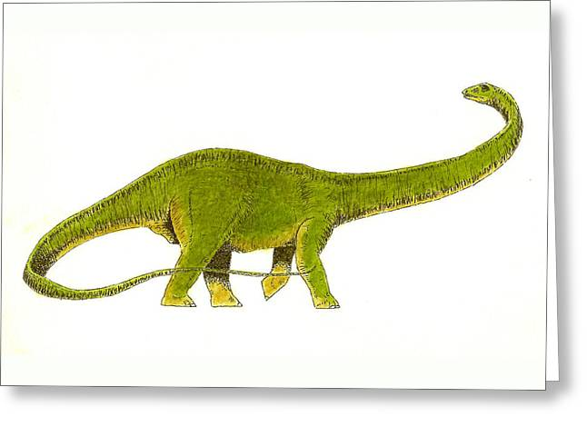 Diplodocus Greeting Card by Michael Vigliotti