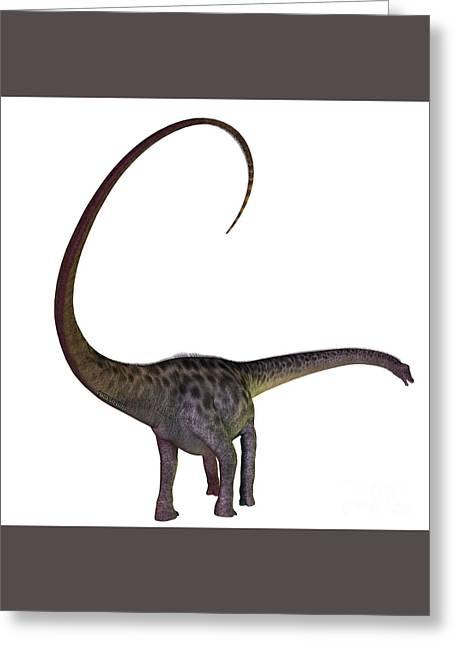 Diplodocus Digital Greeting Cards - Diplodocus on White Greeting Card by Corey Ford