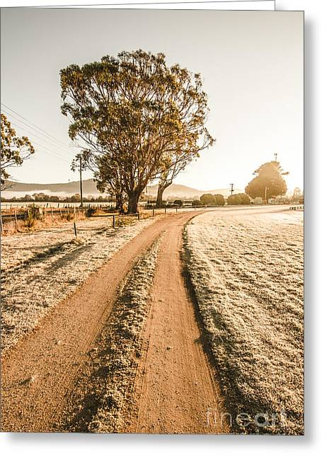 Dirt Frosted Country Road In Winter Greeting Card by Jorgo Photography - Wall Art Gallery
