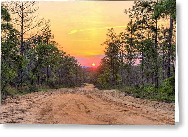 Rural Florida Greeting Cards - Dirt Road Sunset Greeting Card by JC Findley