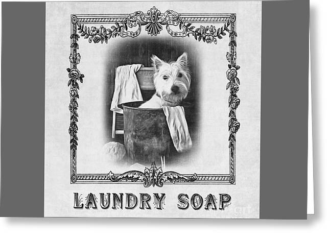 Dirty Dog Laundry Soap Greeting Card by Edward Fielding