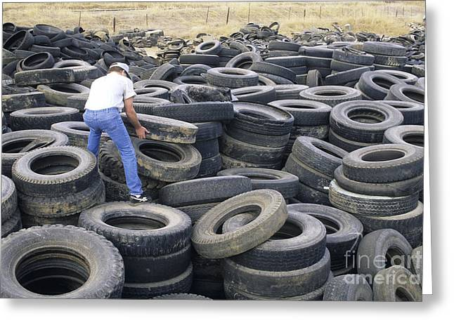 Repurposed Greeting Cards - Discarded Old Tires Piled For Recycling Greeting Card by Inga Spence