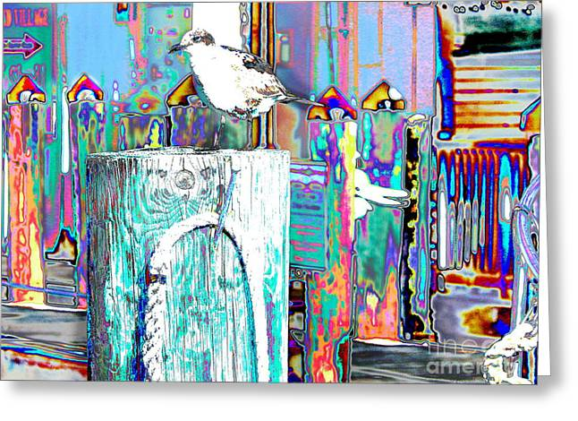 Sit-ins Greeting Cards - Disco Dock Seagull Greeting Card by Expressionistar Priscilla-Batzell