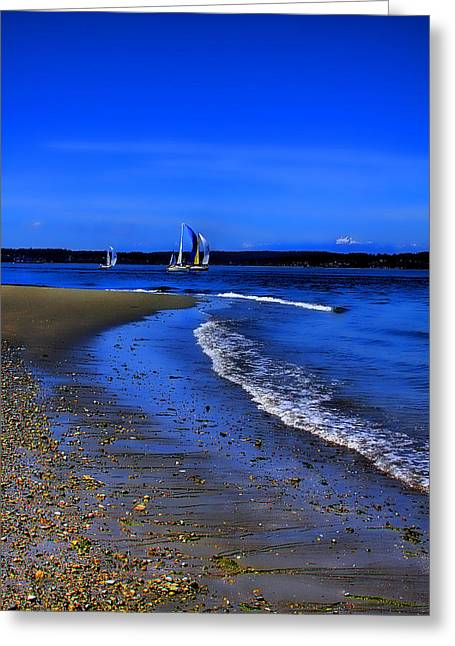 Discovery Park North Beach Greeting Card by David Patterson