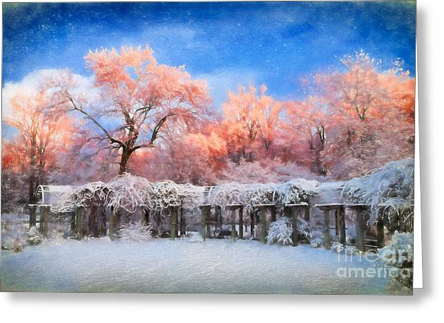 Winter Photos Paintings Greeting Cards - Distinctly Pink Greeting Card by Dan Carmichael