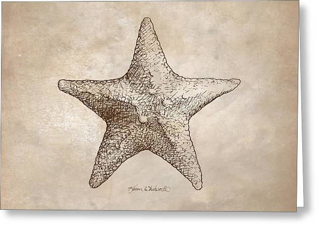 Seashell Drawings Greeting Cards - Distressed Antique Nautical Starfish Greeting Card by Karen Whitworth
