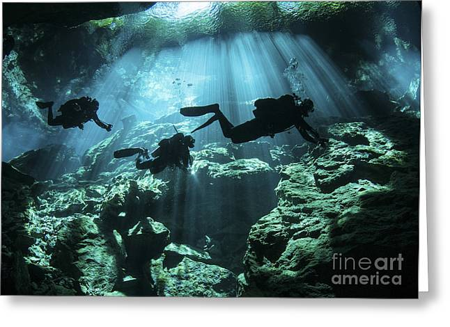 Technical Photographs Greeting Cards - Diver Enters The Cavern System Greeting Card by Karen Doody