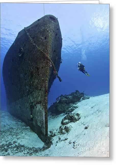 Undersea Photography Greeting Cards - Diver Exploring The Felipe Xicotencatl Greeting Card by Karen Doody