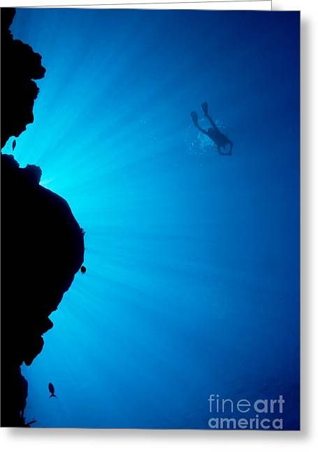 Yapping Greeting Cards - Diver, Wall and Sunrays Greeting Card by Dave Fleetham - Printscapes