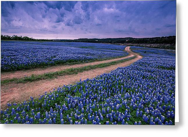 Open Field Greeting Cards - Divided Blue Greeting Card by William Huchton