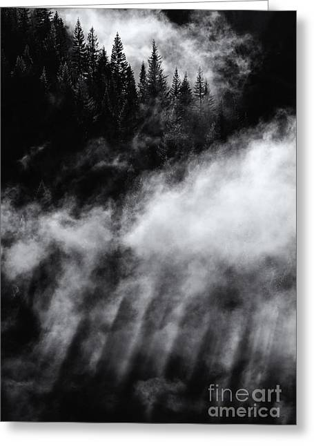 Divine Light Greeting Card by Mike Dawson