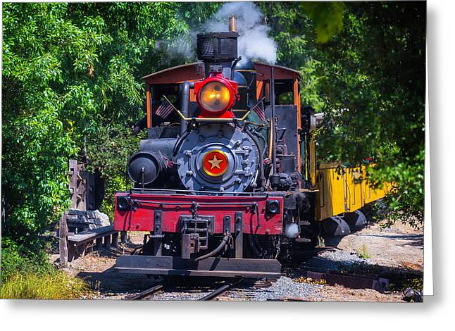 Dixiana Coming Through The Woods Greeting Card by Garry Gay